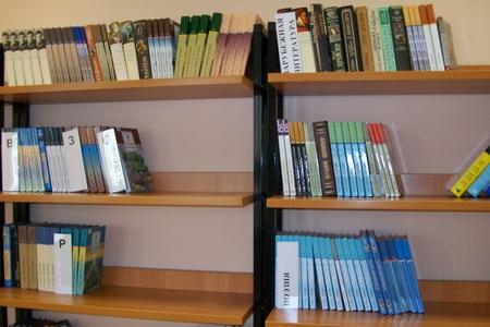 Библиотека ГБОУ школа № 655 СПб - фото 3